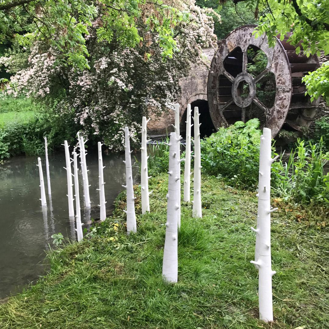 A Reflection on Elaine Bolt's 'Trees' Installation